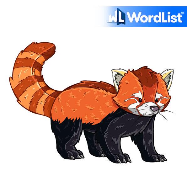 red cat-bear